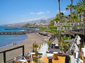 Monkey Beach Club
